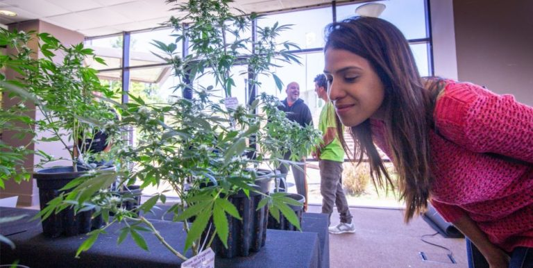 Expocannabis_Uruguay